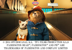 Paddington-240-1.jpg