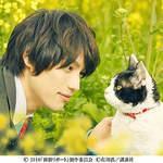『旅猫リポー ト』グッズプレゼント(10/27〆切)