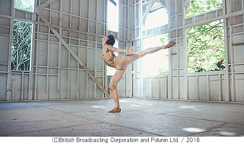 Dancer-500-3.jpg