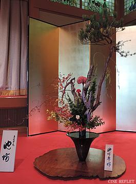 koto-ivent-240-5.jpg