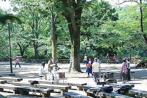 parks-500-4.jpg