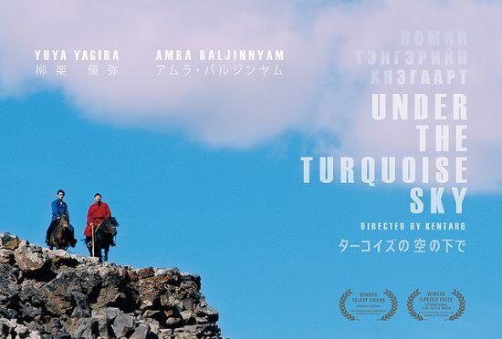 turquoise-pos-2.jpg