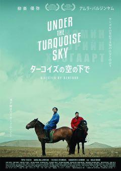 turquoise-pos.jpg