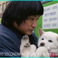 『ムサン日記~白い犬』