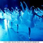 『ボリショイ・バビロン 華麗なるバレエの舞台裏』