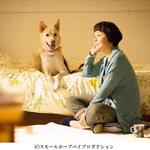 『犬に名前をつける日』
