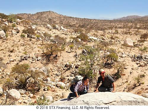 desierto-500-3.jpg