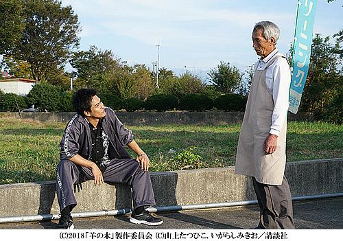 hitujinoki-500-2.jpg