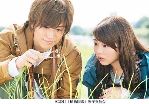 shokubutuzukan-500-1.jpg