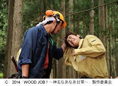 woodjob-6.jpg