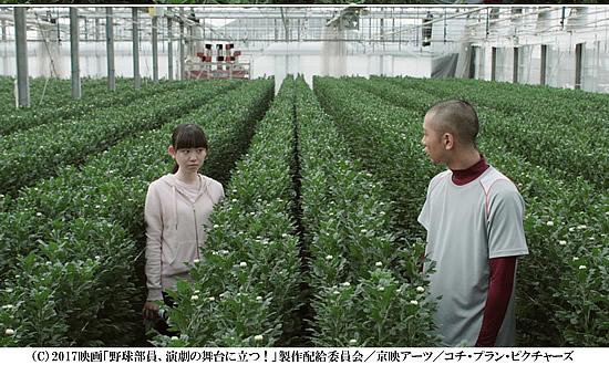 yakyu-butai-550.jpg